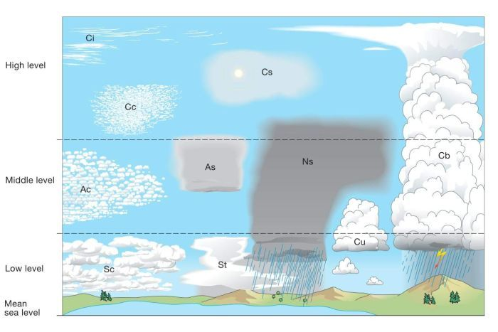 Diagram of the different types of clouds. |700x467